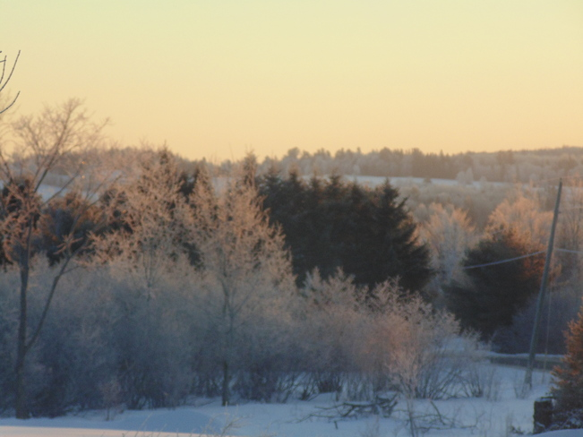 morning frost Woodstock, New Brunswick Canada