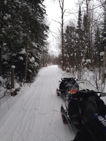 sled ride on the trails Sault Ste. Marie, Ontario Canada