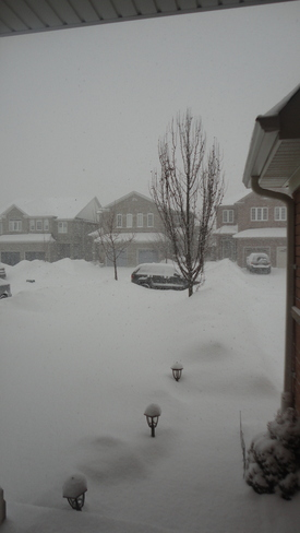 Snow flakes falling falling on my driveway Mississauga, Ontario Canada