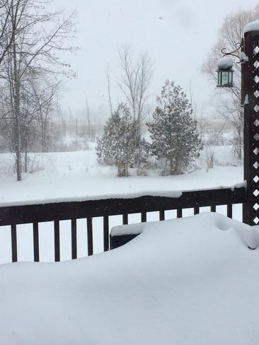view off back deck Verona, Ontario Canada