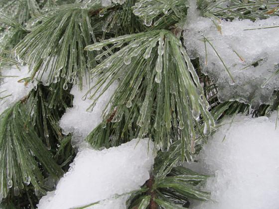 Ice in North Huntingdon
