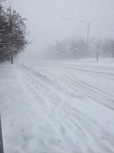 less visibility Toronto, Ontario Canada