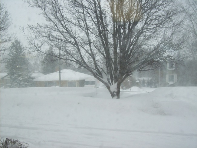 Blwing and drifting snow 2nd Wednesday in a row Belleville, Ontario Canada