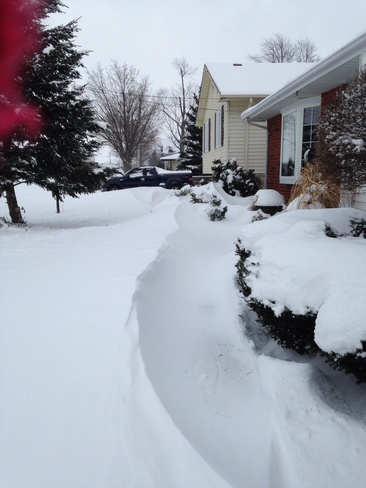 More snow!! Mooretown, Ontario Canada