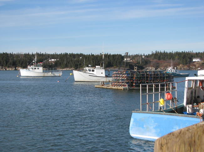 the Lobster boats Maces Bay, New Brunswick Canada