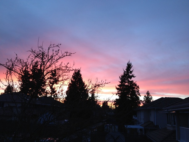 beautiful colors of sunset Surrey, British Columbia Canada