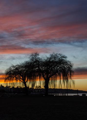 Sunset at Kitsilano Vancouver, British Columbia Canada