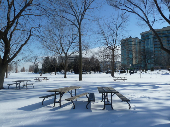 Empty Picnic Tables in Park Windsor, Ontario Canada