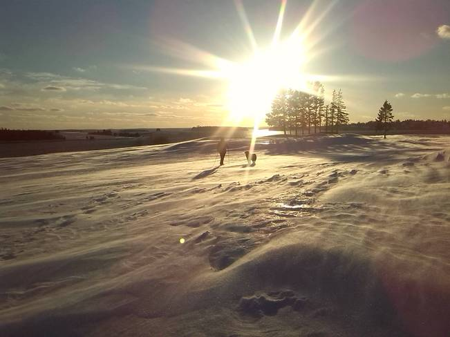 Snow shoeing Chester, Nova Scotia Canada