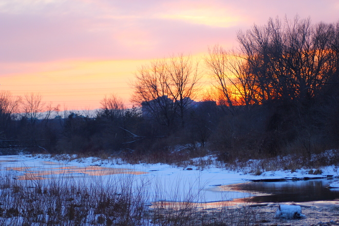 Mother Nature in Winter Colours Etobicoke, Ontario Canada