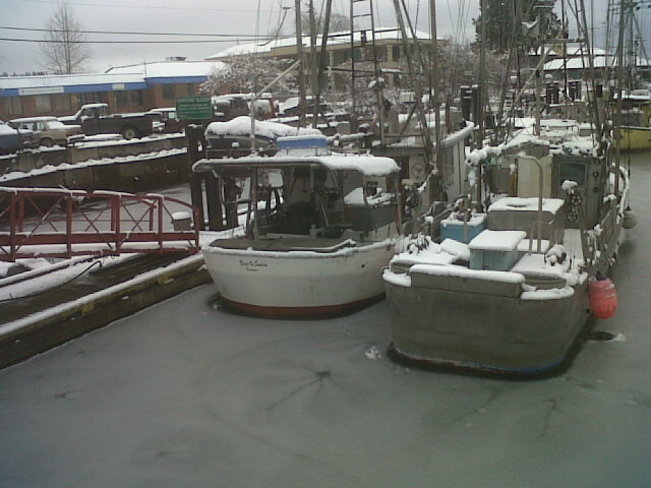 Boats in Courtenay Slough surrounded by thin ice Comox Valley, British Columbia Canada