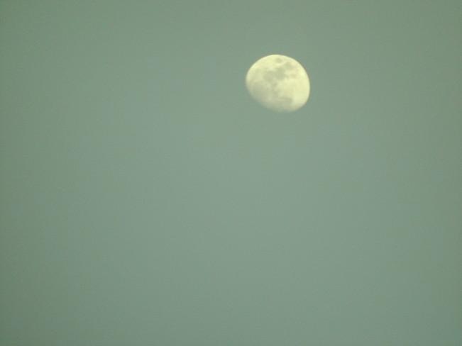 Almost full moon. Regina, Saskatchewan Canada