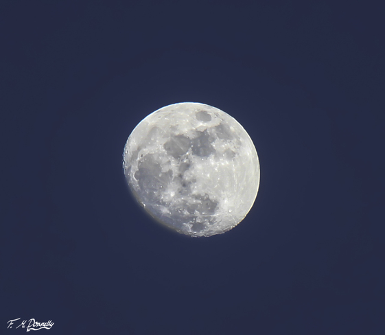 The Moon Last Evening Smiths Falls, Ontario Canada