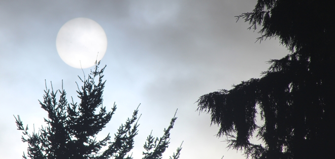 Afternoon Cloudy Sun New Westminster, British Columbia Canada