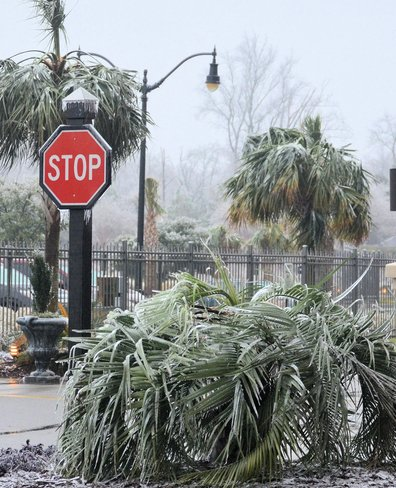please stop the ice storm North Myrtle Beach, South Carolina United States