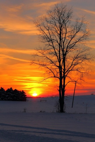Cold Sunset Woodstock, Ontario Canada
