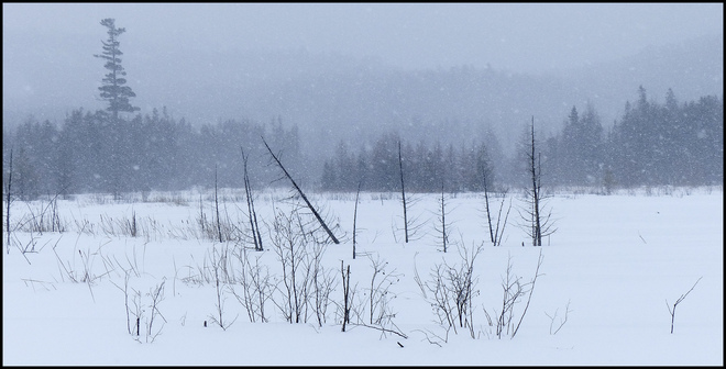 Sheriff Creek snowy day at the pond. Elliot Lake, Ontario Canada