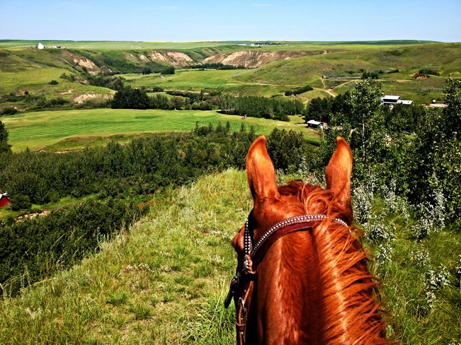 I think we could all use a little bit of green..! Rosebud, Alberta Canada
