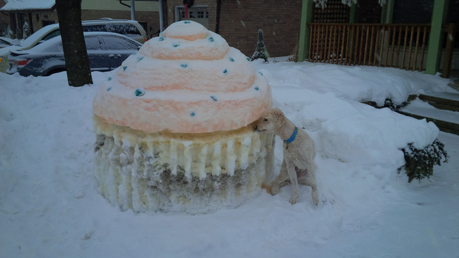 Tired of Winter Make Cupcakes Kitchener, Ontario Canada