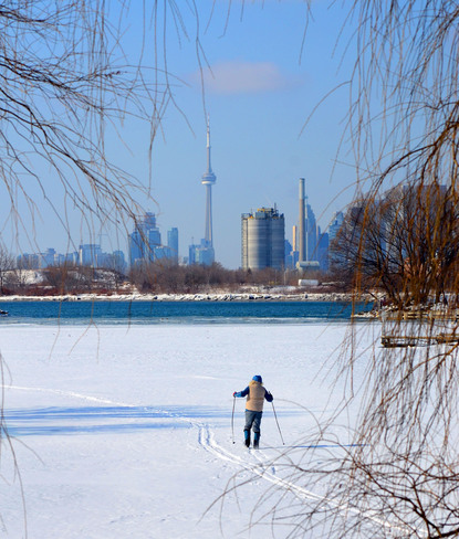 Cross country skiing in the shadow of the CN Tower Toronto, Ontario Canada