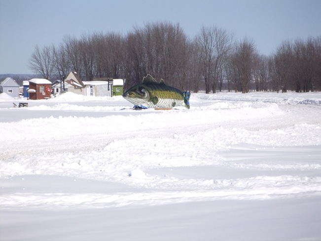 A real fishing hut! Orleans, Ontario Canada
