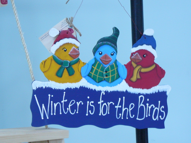 Winter is for the birds Nigadoo, New Brunswick Canada