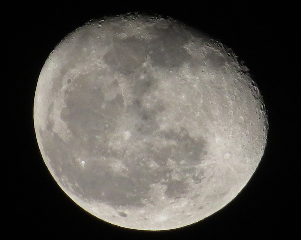 Lunar Phase: Waning Gibbous Chester, Nova Scotia Canada