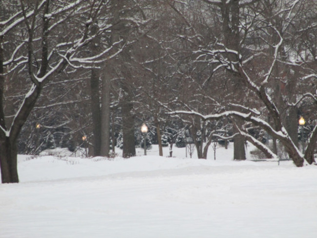 Westmount Park Covered in Snow Westmount, Quebec Canada