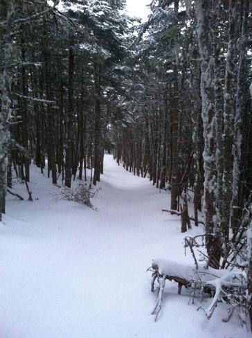winter Portugal Cove-St. Philip's, Newfoundland and Labrador Canada