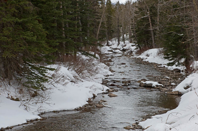 Open Water but Snowing Lethbridge, Alberta Canada