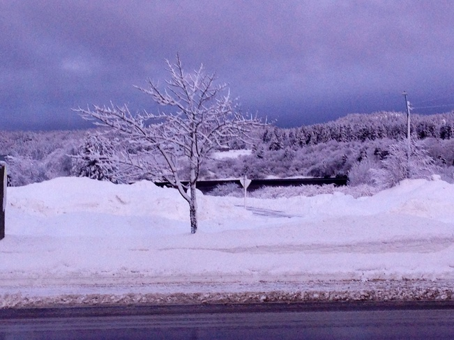 #snowdayNo.2 Blacks Harbour, New Brunswick Canada