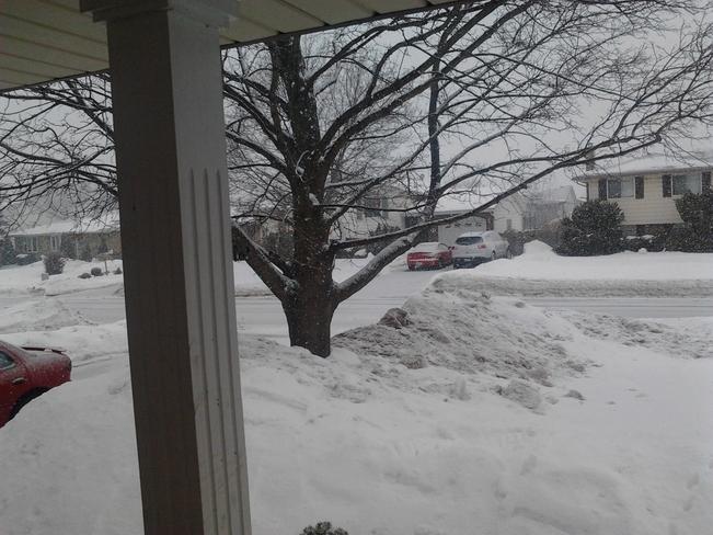 snow!! Sarnia, Ontario Canada