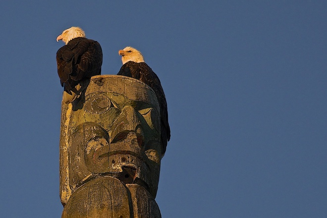Eagles on the Totem pole Vancouver, British Columbia Canada