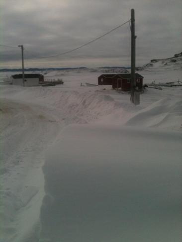 Snow Fall Twillingate, Newfoundland and Labrador Canada
