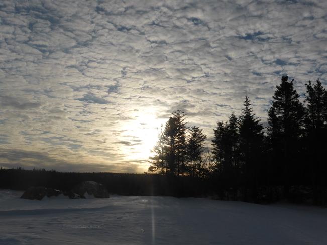 Morning Sun Birchy Bay, Newfoundland and Labrador Canada