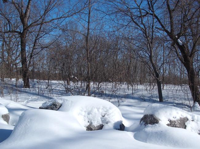 douceur d'hiver Montréal, Quebec Canada
