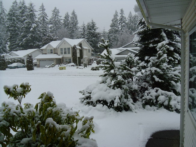 Snow storm Ladysmith, British Columbia Canada