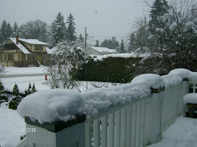 Winter finally arrives Duncan, British Columbia Canada