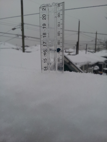 14 cm of snow in Lower Mainland Vancouver, British Columbia Canada