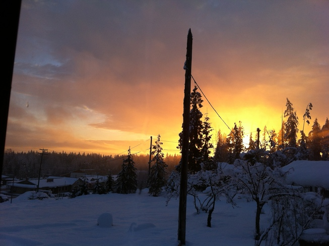 Good Morning - after the snow! Coombs, British Columbia Canada