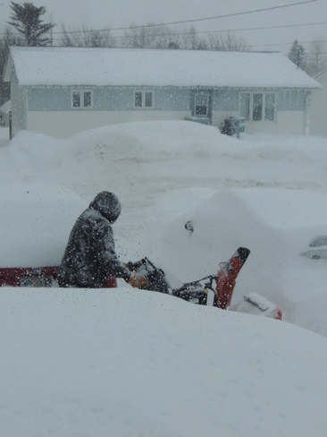 Clearing snow everyday! Lewisporte, Newfoundland and Labrador Canada