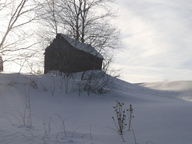 LITTLE SHACK ON THE HILL Massey, Ontario Canada