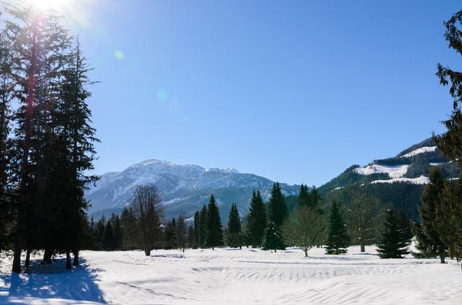 wow sun Revelstoke, British Columbia Canada