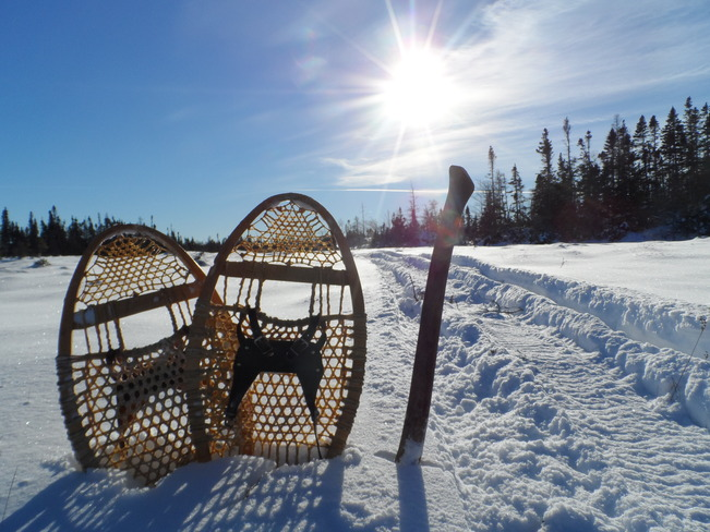 nice morning snowshoeing.. Comfort Cove-Newstead, Newfoundland and Labrador Canada