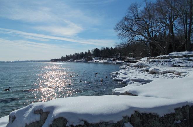 Palmetto Park Burlington, Ontario Canada