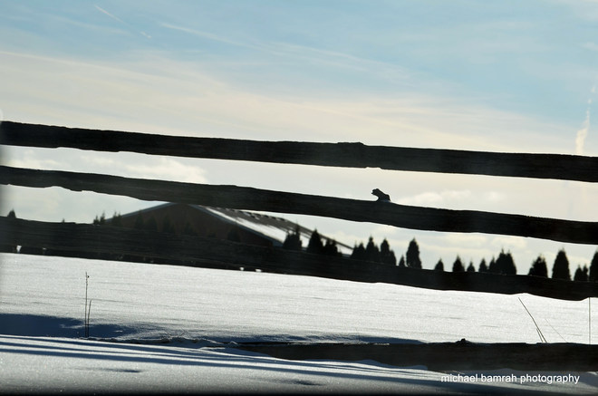 Country Fence Brooklin, Ontario Canada