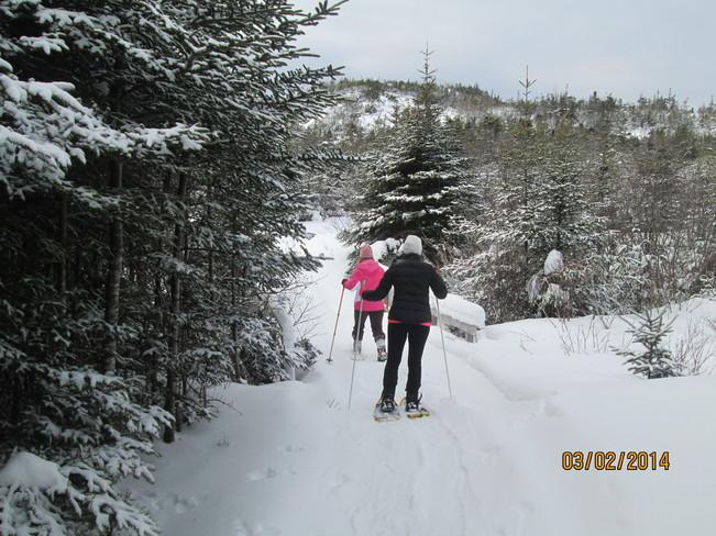 winter fun Harbour Breton, Newfoundland and Labrador Canada