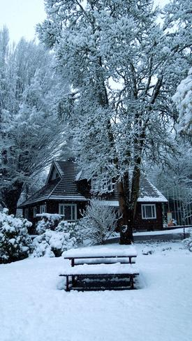 Winter Langley, British Columbia Canada
