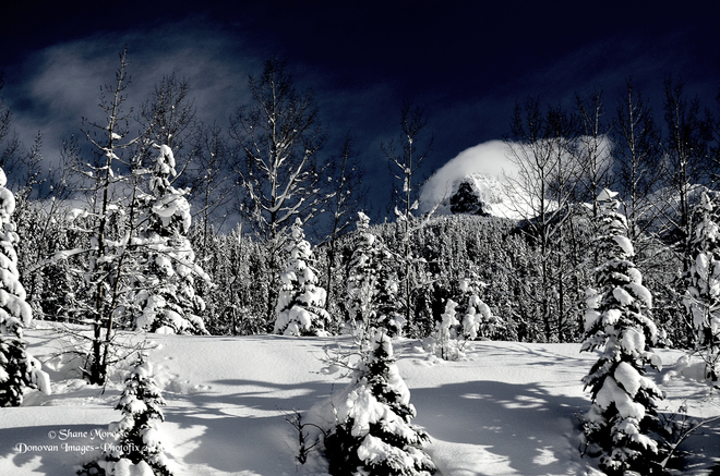 Winter Serenity Valemount, British Columbia Canada