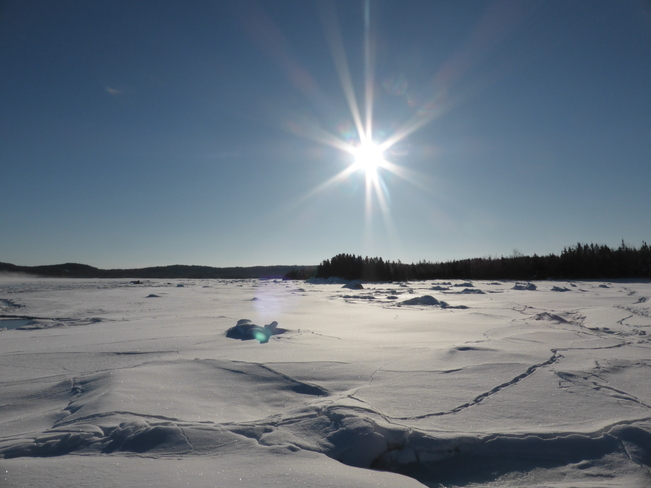 Bright Morning Sun Birchy Bay, Newfoundland and Labrador Canada